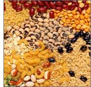 Agro Food Products,Food Product Exporters,Indian Agro